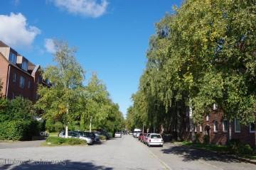verdieckstrasse-1212