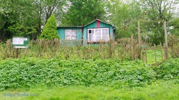 Kleingärten Langsee - 9632